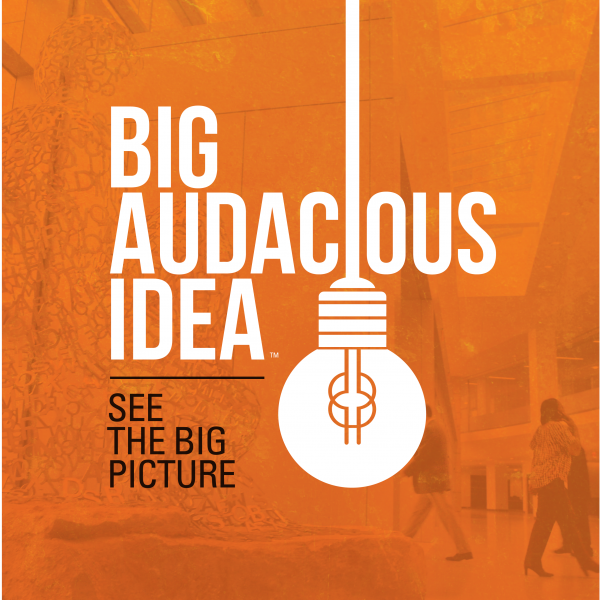 Big Audacious Idea